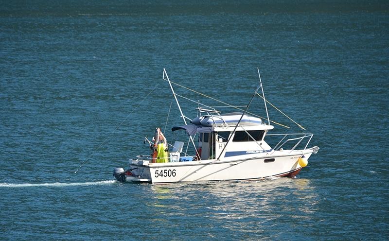 DSC_0203boat